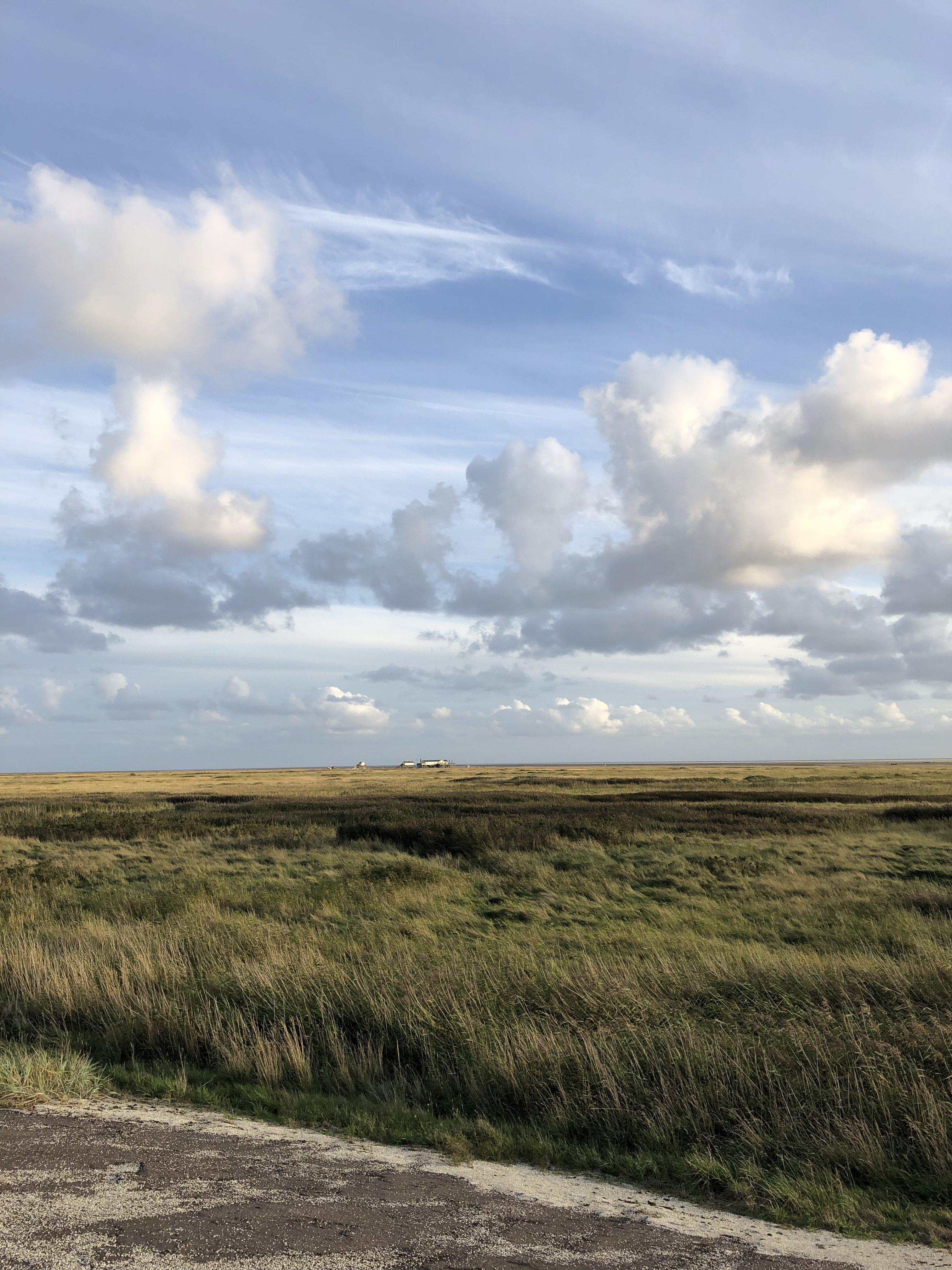 Salzwiesen in St. Peter-Ording, blauer Himmel, Wolken